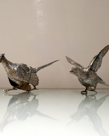 pair pheasants