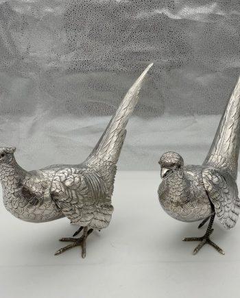 pair pheasants